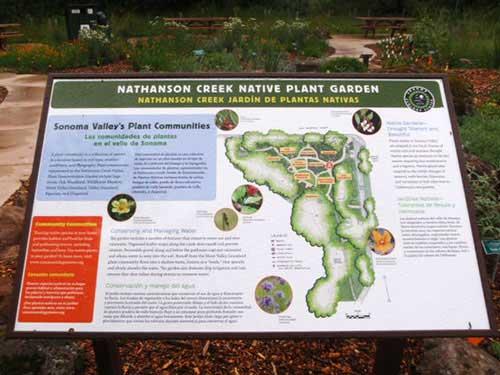 Nathanson Creek