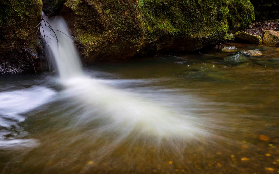 VIDEO: Sonoma Creek Falls Is Raging