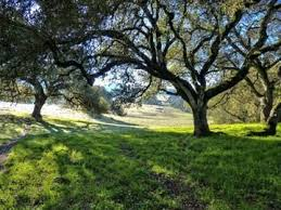 SugarShuttle: N. Sonoma Mtn Park / Jack London Park Service (spring & fall) @ Jack London & N.Sonoma Mt. Parks | Glen Ellen | California | United States