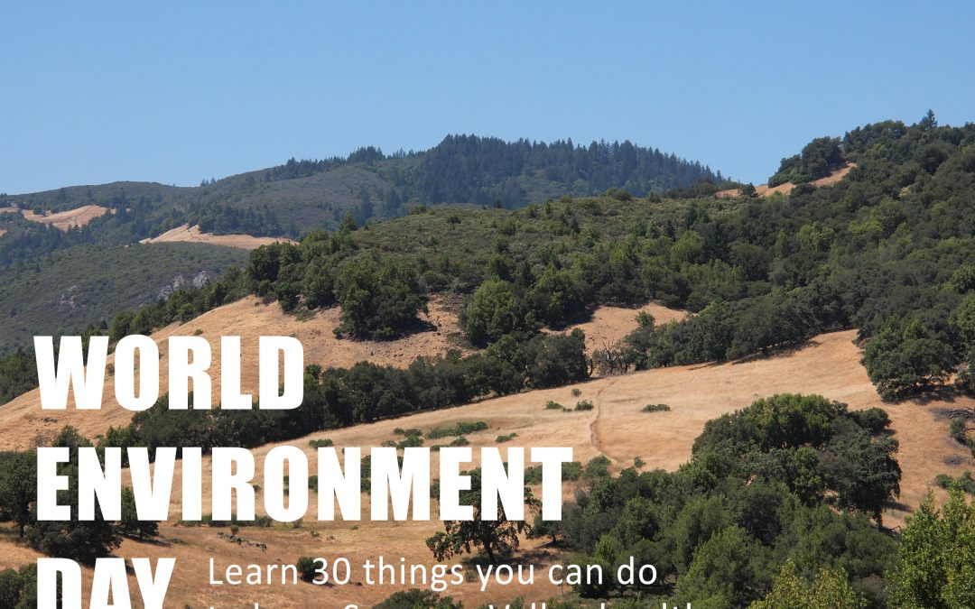 30 Ways to Honor World Environment Day Locally