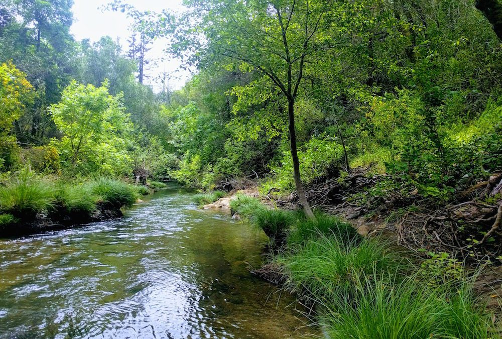 Tracking Streamflow in Sonoma Valley