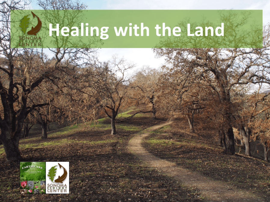 See Our 'Healing with the Land' Slideshow