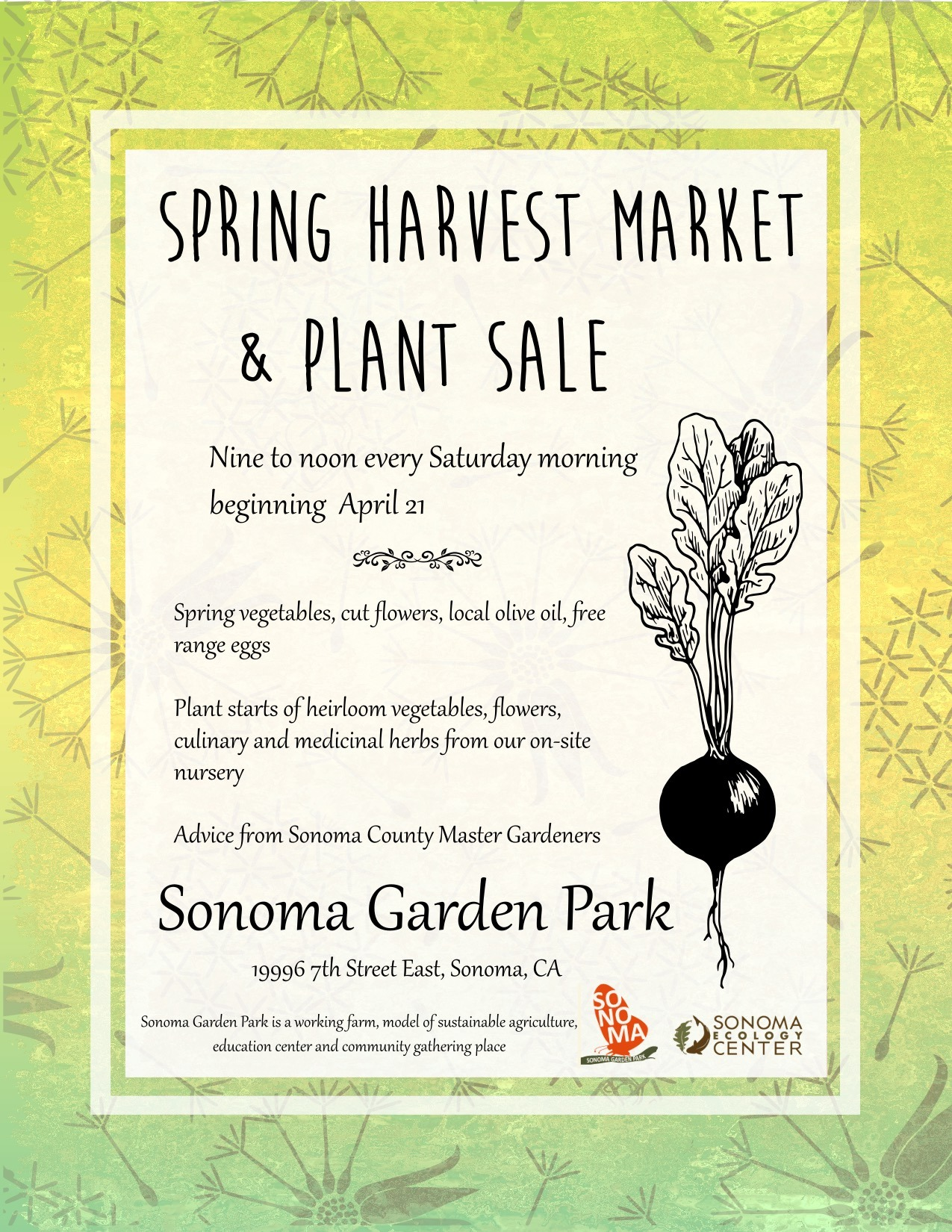 Harvest Market Reopens for Season