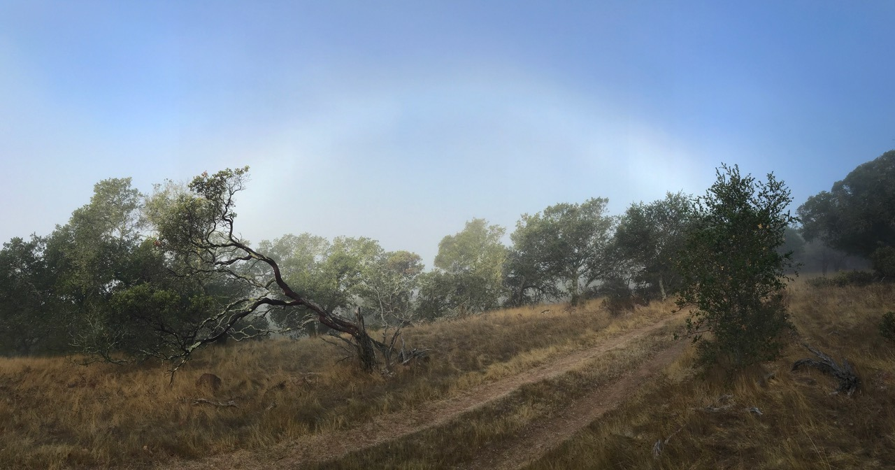 Fogbow in the Hills
